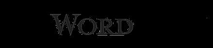 wordpress website developer designer